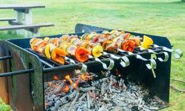 Shish Kebab cooking on the Nature Stock Photo