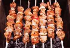 Shish kebab Stock Image