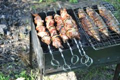 Shish kebab, DOF Royalty Free Stock Photos