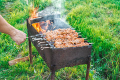 Shish kebab is fried on coals Royalty Free Stock Photo