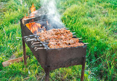 Shish kebab is fried on coals Stock Photos