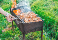 Shish kebab is fried on coals Royalty Free Stock Image