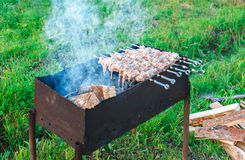 Shish kebab is fried on coals Stock Image