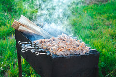 Shish kebab is fried on coals Stock Photo