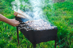 Shish kebab is fried on coals Stock Photography