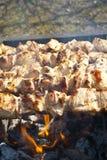 Shish kebab on the grill Royalty Free Stock Photos