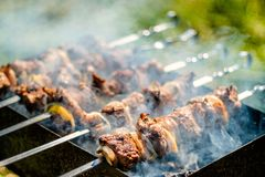 Shish kebab on the grill. Cooking meat on the fire. Shish kebab on the grill