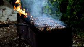 Shish kebab on the grill. Meat cooking on the grill Stock Photos