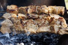 Shish kebab on the grill Royalty Free Stock Photos