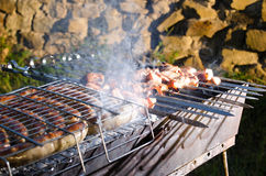 Shish kebab on the grill with smoke. Stock Photos