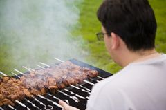 Shish kebab on household picnic. Tasty shish kebab on household picnic stock photos