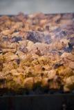 Shish kebab on household picnic Royalty Free Stock Image
