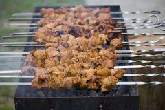 Shish kebab on household picnic. Tasty shish kebab on household picnic stock photo