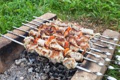 Shish kebab na piekarniku robić cegła Zdjęcia Stock