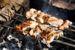 Shish kebab na węglach obrazy stock