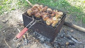 Shish kebab in the nature, barbecue Stock Image