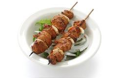 Shish kebab op vleespennen Stock Foto