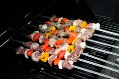 Shish kebab op vleespennen Royalty-vrije Stock Fotografie