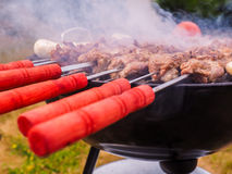 Shish kebab over barbecue Stock Photo