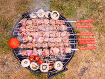 Shish kebab over barbecue Stock Photography
