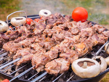 Shish kebab over barbecue Stock Images
