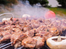 Shish kebab over barbecue Stock Photos