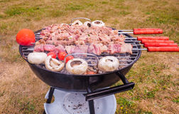 Shish kebab over barbecue Stock Photos