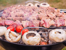Shish kebab over barbecue Royalty Free Stock Photo