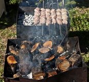 Shish kebab . Royalty Free Stock Photography