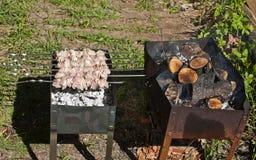 Shish kebab . Stock Photography