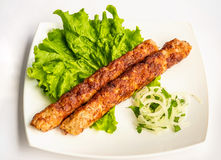 Shish kebab on a plate. With greens, onions Royalty Free Stock Photos
