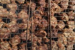 A shish kebab from pork meat is fried on a fire on a lattice during a picnic. royalty free stock photo