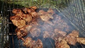A shish kebab from pork meat is fried on a fire on a lattice during a picnic. royalty free stock photography