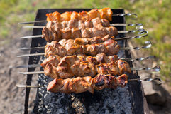 Shish kebab of the pork with the mix of spices Stock Images