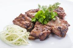 Shish kebab from pork tenderloin with onion stock photography