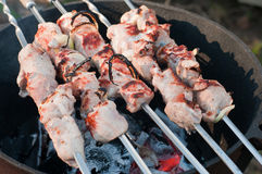 Shish kebab preparation on a brazier Stock Photography