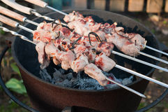 Shish kebab preparation on a brazier Stock Image