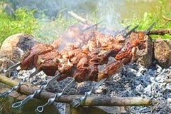 Shish kebab roasting on charcoal. Shashlik roasting on charcoal, closeup view Stock Photography