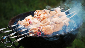 Shish kebab roasting on the coals. Chicken skewers roasted over charcoal in the summer Stock Images