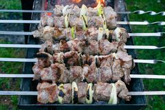 Shish kebab roasting on the grill. BBQ party. Close-up. Barbecue with onion. Barbucue season Royalty Free Stock Images