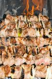Shish kebab roasting on the grill. BBQ party. Close-up. Barbecue with onion. Barbucue season Stock Photography