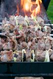 Shish kebab roasting on the grill. BBQ party. Close-up. Barbecue with onion. Barbucue season Stock Photos