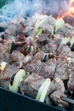 Shish kebab roasting on the grill. BBQ party. Close-up. Barbecue with onion. Barbucue season Stock Image