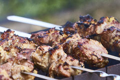 Shish-kebab russian version Stock Image