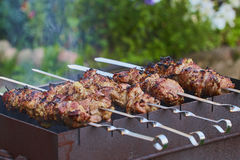 Shish-kebab russian version Stock Photography