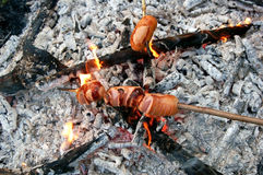 Shish kebab from sausage. Grilled shish kebab from sausage and hot coals Stock Photo