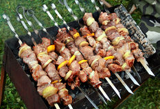 Shish kebab (shashlik) Stock Images