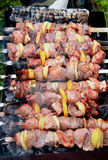 Shish kebab (shashlik) Royalty Free Stock Images
