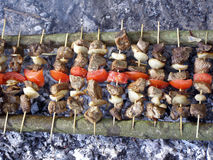 Shish kebab on skewer. Shashlik above coals are prepared to the golden crust Royalty Free Stock Images