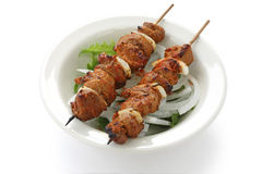 Shish kebab on skewers Stock Photo